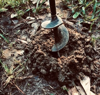 drill holes in lawn to improve drainage and amend clay