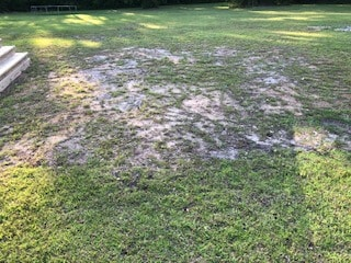 Slow grass growth in area where no holes were drilled.